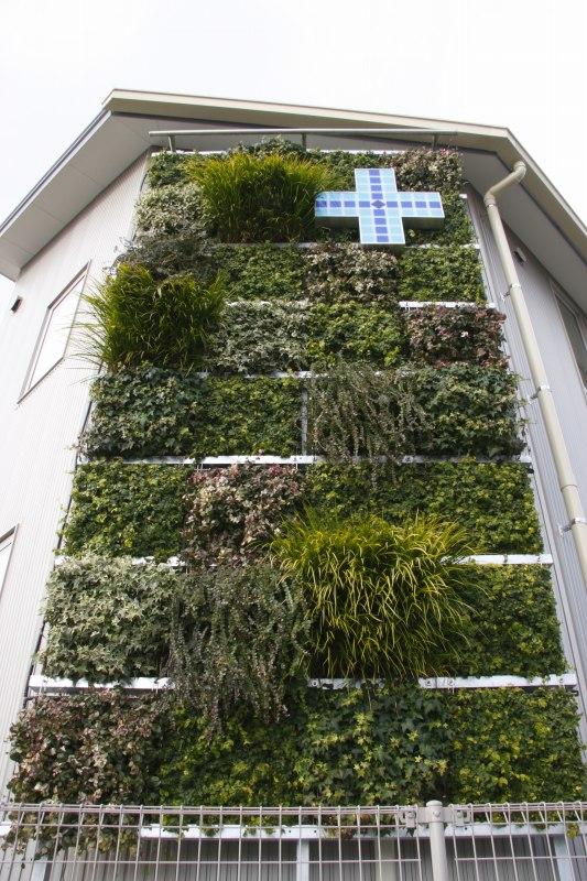 調剤薬局には緑の壁!