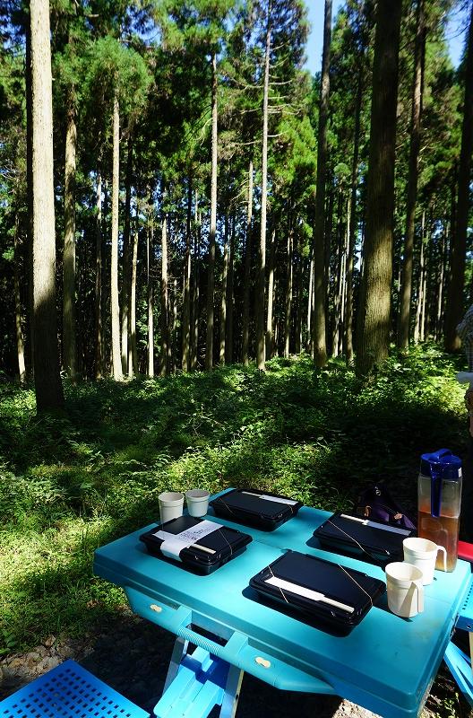 計画中のお施主さんを、田島山業さんの森へご案内しました♪